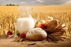 Информация про кредитование аграриев в Николаевской области
