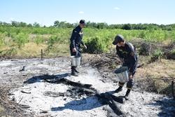 Полиция будет разбираться с местным жителем, который возле Новой Одессы развел полсотни костров возле насаждений молодых деревьев