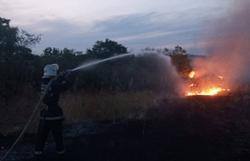 Из-за халатности людей в Новоодесском районе на открытых территориях горела трава и мусор