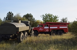 Возле Новой Одессы неизвестный подпалил камыши (Фото, Видео)